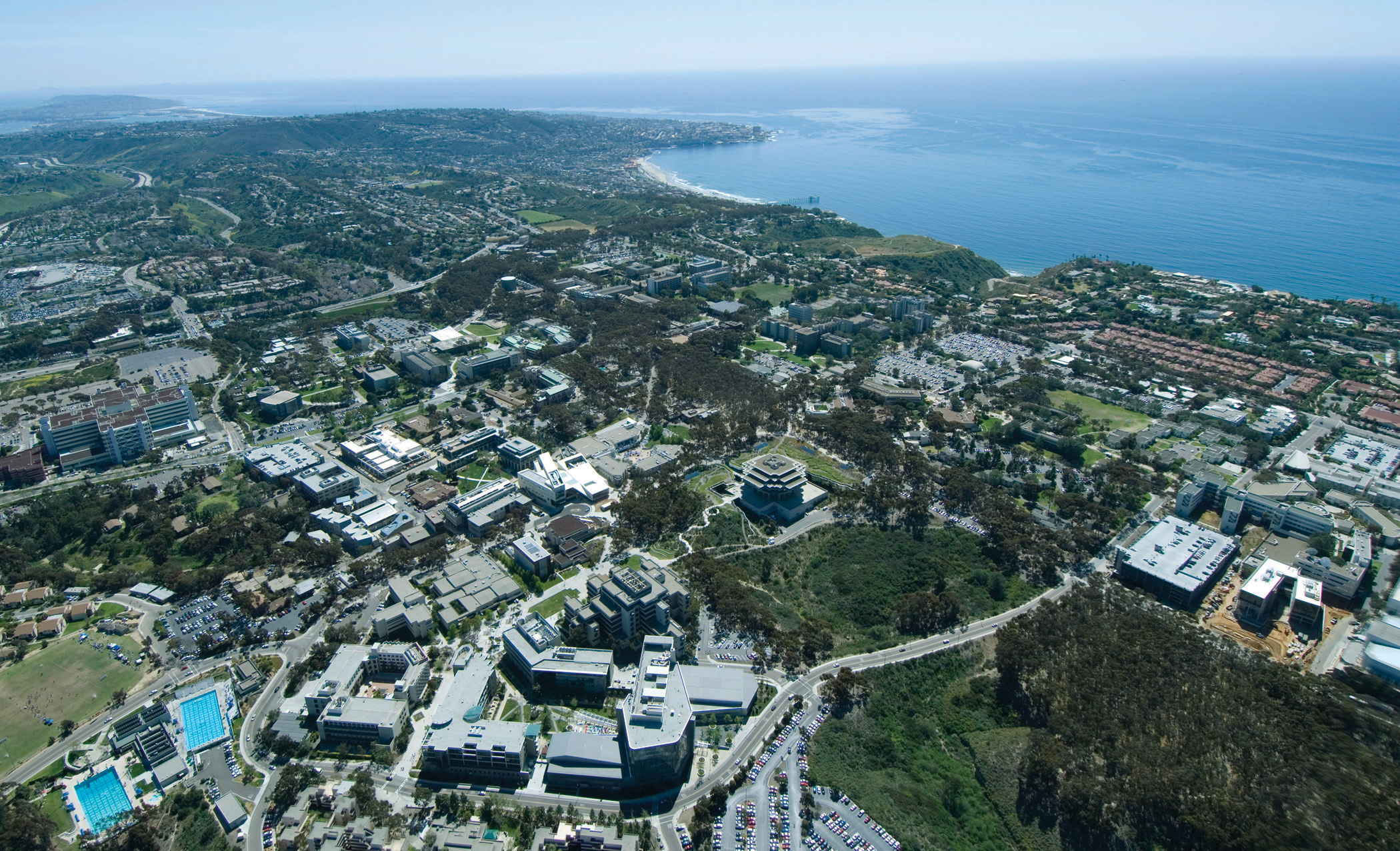 ucsd.edu - Assistant Professor - in Cognitive and Behavioral Neuroscience